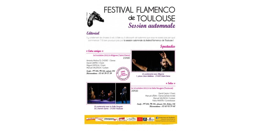 Festival Flamenco de Toulouse Session Automnale 2015