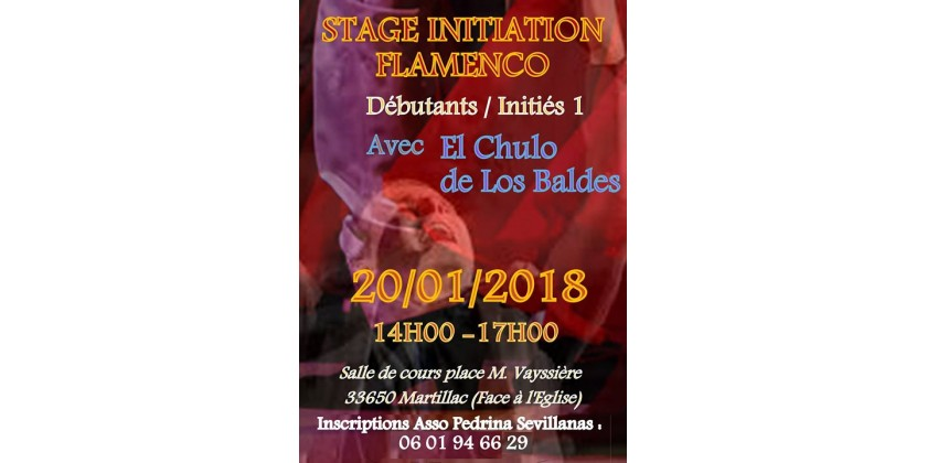 STAGE INITIATION FLAMENCO LE 20/01/2018 A MARTILLAC 33